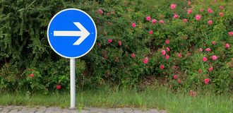 Flecha - señal de tráfico - travesía de camino Imágenes de archivo libres de regalías