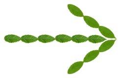 Flecha verde Imagenes de archivo