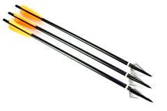 Flechas con las puntas de Broadhead Fotografía de archivo