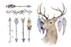 Flechas dibujadas mano de la acuarela fijadas con los ciervos nativo americano étnico libre illustration
