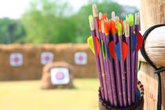 Flechas y tiro al arco de la blanco Fotografía de archivo