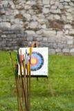 Flechas y tiro al arco de la blanco en campo Fotos de archivo libres de regalías