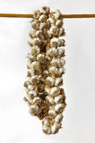Flechten des Knoblauchs hängend an einem hölzernen Pol Lizenzfreie Stockfotos