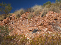 Flecked Dolomite rock and spinifex grass Royalty Free Stock Photos