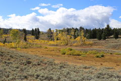 Flecken des Herbstes Stockbild