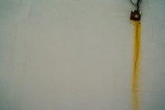 Fleckrost Stockbilder