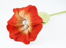 Fleece flower Royalty Free Stock Photo