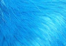 Fleecy fabric texture Stock Photo
