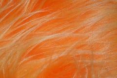 Fleecy fabric texture Royalty Free Stock Photo