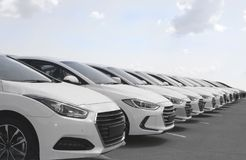 Fleet of cars. Fleet of identical white cars in parking bays stock images