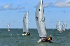 Fleet of sailboats Stock Images