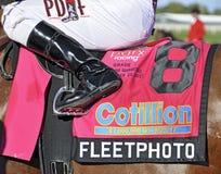 Fleetphoto-Kotillon-Stangen stockfotos