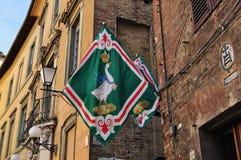 Fleg dell'oca a Siena Fotografia Stock Libera da Diritti