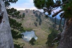 flega `` Smok `` wysokogórska jeziora 1940m wysokość, Epirus, Grecja Obraz Royalty Free