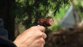 Fleisch auf einer Gabel stock footage