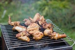 Fleisch auf Grill Lizenzfreies Stockbild