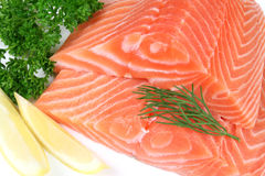 Fleisch der rohen Fische Lizenzfreie Stockfotografie