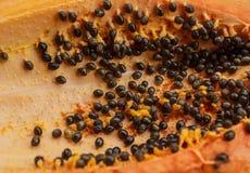 Fleisch der Papaya Stockfotografie