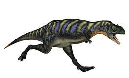 Fleisch fressender Dinosaurier Stockbild