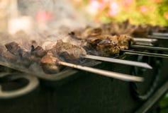 Fleisch gebraten auf Feuer Stockfotografie