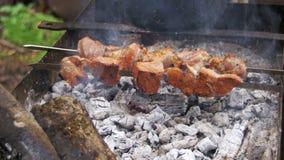 Fleisch gegrillt auf Aufsteckspindeln Kochen des Kebabs stock video