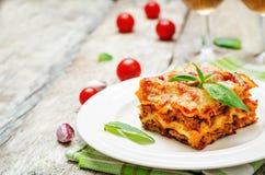 Fleisch-Lasagne Lizenzfreie Stockfotos