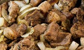 Fleisch mit Zwiebel und Gewürzen Lizenzfreies Stockfoto