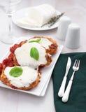 Fleisch parmigiaana mit Mozzarellakäse lizenzfreies stockbild