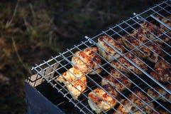 Fleisch wird auf der Natur gegrillt stockfotos