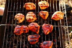 Fleisch wird auf der Natur gegrillt stockbilder