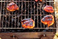 Fleisch wird auf der Natur gegrillt lizenzfreies stockbild