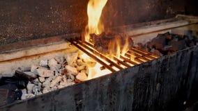 Fleisch wird auf Feuer gebraten stock video