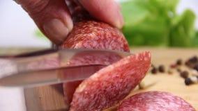 Fleisch, Wurst, geschnitten, frisch, bereit stock video footage