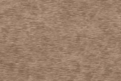 Fleischige Beschaffenheit eines durcheinandergebrachten Packpapierbrauns vektor abbildung