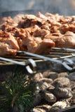 Fleischkebabs auf bbq lizenzfreie stockfotos