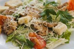 Fleischsalat mit Gemüse und Croutons Lizenzfreies Stockbild