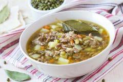 Fleischsuppe mit Rindfleisch, grüne Bohnen Mungs, Hülsenfrüchte, heißer Inder stockfotos