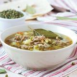 Fleischsuppe mit Rindfleisch, grüne Bohnen Mungs, Hülsenfrüchte, heißer Inder lizenzfreie stockfotografie
