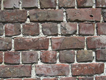 Flemish Bond Brickwork Stock Images