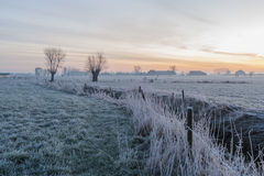 Flemish countryside landscape. Morning view of winter Belgian flemish countryside landscape with stream Royalty Free Stock Images