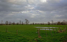 Flemish farmland landscape. Typical flemish farmland landscape in winter on a cloudy day with bare trees in the background Royalty Free Stock Photo