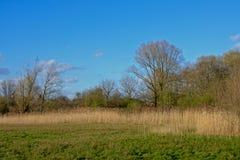 Flemish marshland landscape in the `Oude Kale` nature reserve Stock Photos