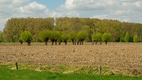 Flemish spring farmland landscape Stock Photography