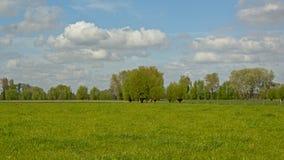 Flemish spring landscape Stock Photography