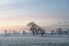 Flemish winter landscape. Morning view of winter Belgian flemish countryside landscape with stream Royalty Free Stock Photo