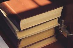 Flera böcker i bokhyllan Royaltyfri Fotografi
