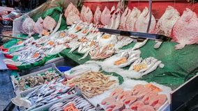 Flera fiskar med prislappar på skärm i fiskmarknad på Kadiko Arkivfoto