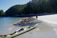 Flera havskajaker som sättas på land på vit sand, grön skog i bakgrunden Royaltyfria Foton