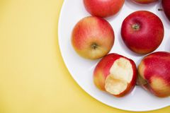 Flera hela röda äpplen och ett som bitas i en platta på en gul bakgrund av det höstsammansättning och begreppet arkivbilder