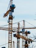 Flera kranar på konstruktionsplats Arkivfoto